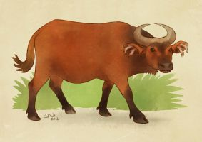 African Forest Buffalo by commander-salamander