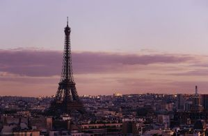Paris by Megson