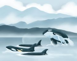 Family of the Salish Sea by Hysazu