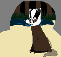 Midnight, The Badger That Lives In The Seas by Marlakyokitty