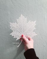 hello autumn papercut by KiaSuee