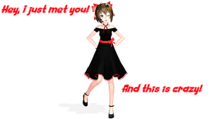[MMD] This is Crazy [Meiko - Call Me Maybe] by g-girl1