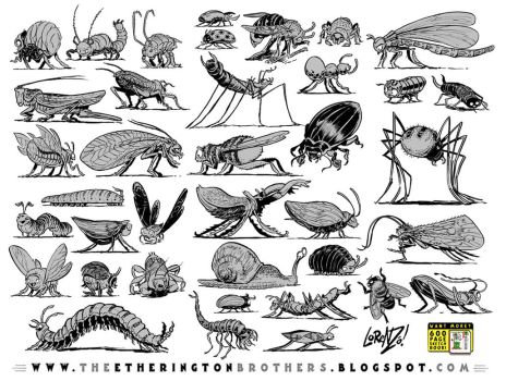 38 Insects, Bugs and Creepy-Crawlies by STUDIOBLINKTWICE