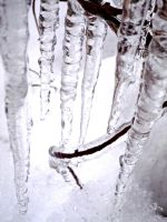 Icicle 2 by madaboutvampires
