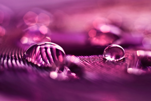 Purple Rain by Rustmouth