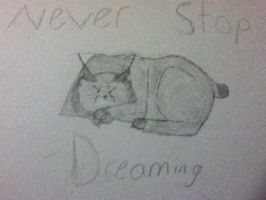 Never stop dreaming by crystalwolfahlpa50