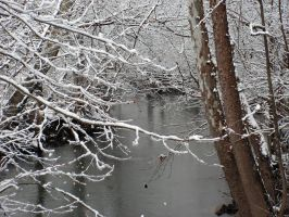 Stream in the Snow by photowizard
