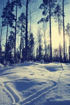 Love of Winter by tang-yi