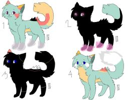 Kitty Breeding Siete [pending] by opadopts