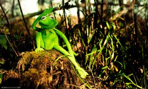 Kermit the great poser by dejz0r