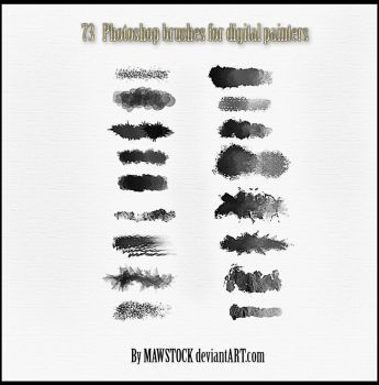 73 PS BRUSHES by mawstock