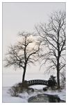 Winter Bridge by Limaria