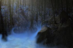 misty forest  by variety-stock by Variety-Stock