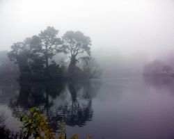 Mist on Stow Lake by Berreitter