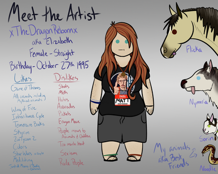 Meet The Artist Meme by xTheDragonRebornx