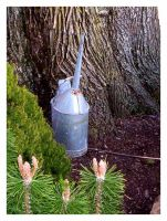 Watering Can by DementdPrncess