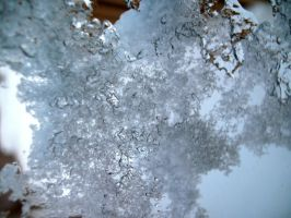 Iced Window-2 by Rubyfire14-Stock