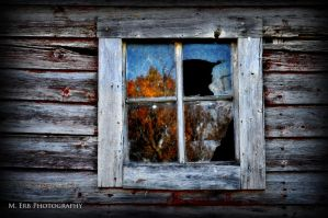 The Forgotten by erbphotography