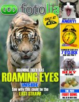 Fotolia Mag Cover by 21giants