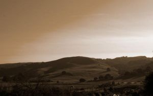 Hills of Napa by surferpete