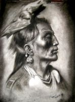 Medicine Crow by faedri