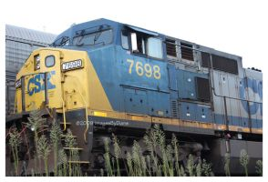 CSX7698 by SassyPants61762