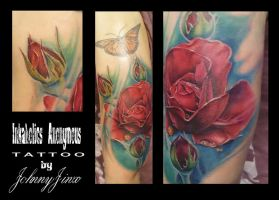 Color Realism Rose by johnnyjinx