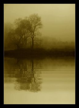 Reflection in the fog by rahimyts