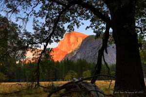 Autumn Lights in Yosemite  17 by Mac-Wiz