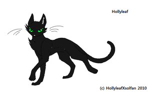 Hollyleaf by hollyleafXsolfan