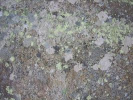 Stone Texture 04 by Siobhan68