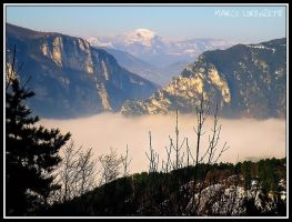 GENGA (AN)- FRASASSI GORGE EMERGING FROM THE FOG by MarcoLorenzetti