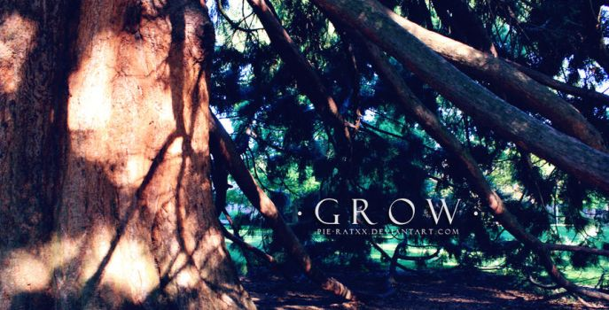 . G R O W . by Pie-Ratxx