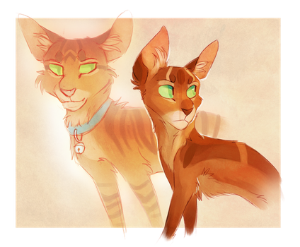 Firestar and Jake by Finchwing