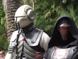 Sith Stalker and Darth Revan by DragonJSP