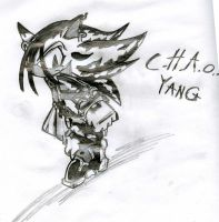 C.H.A.O.S.-Yang the Hedgehog by sonichero360