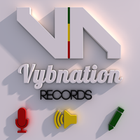Vybnation ReCords Promo by InkazDesignz