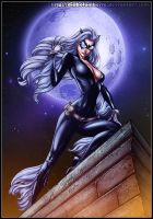 Black Cat by diabolumberto