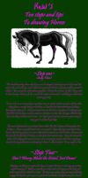 Spitfire How to Draw Horses by WebWingz