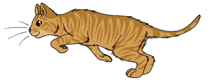 ThunderClan - Thornclaw by WildpathOfShadowClan