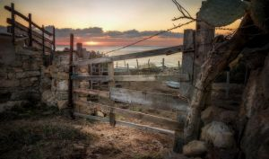 The Gate by Levantera