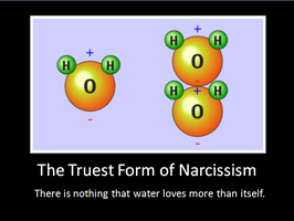 True Narcissism by bdaycrazy