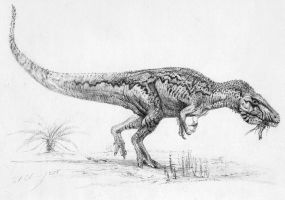 Carcharodontosaurus iguidensis by cheungchungtat
