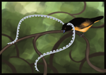 King of Saxony bird-of-paradise by TheSym