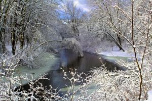 Winter River 12/30/2013 by WillowFox