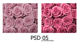 PSD 05 by kattyeditionss by KattyEditionss
