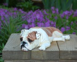 English Bulldog Figurine by Kesa-Godzen