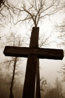 Cross in the fog by lowjacker