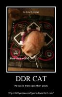 DDR Cat by LeonKSpiderKitty