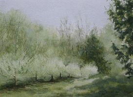May-orchard, Watercolor On Paper by VaillencourtFineArts